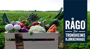 Frukt og grønnsaksbutikk. RÅGO leverer utvalgte råvarer etter sesong. Godt, friskt og sunt - rett hjem!