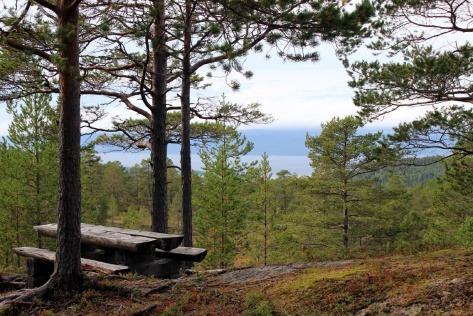 Rasteplass med utsikt over Trondheimsfjorden mot Leksvika
